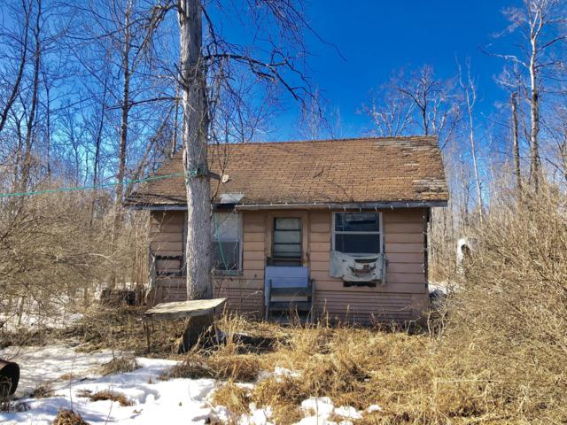 0 V/L, Merritt, MI 49667 (MLS #19002465) :: Deb Stevenson Group - Greenridge Realty