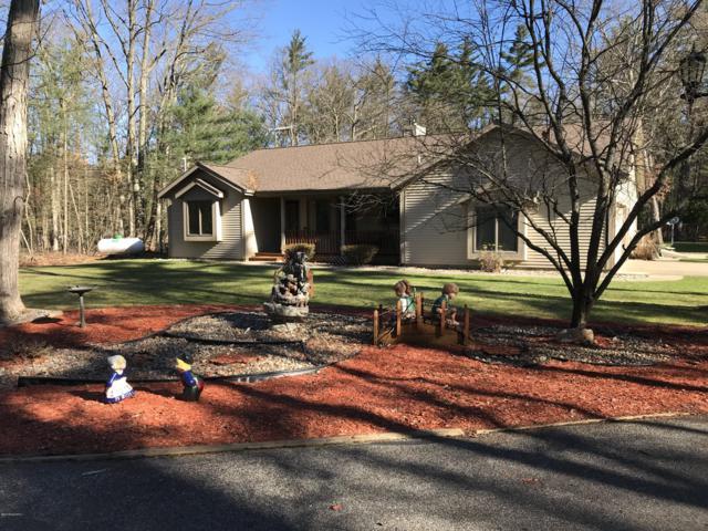 1166 Silver Creek Road, Whitehall, MI 49461 (MLS #19003117) :: Matt Mulder Home Selling Team
