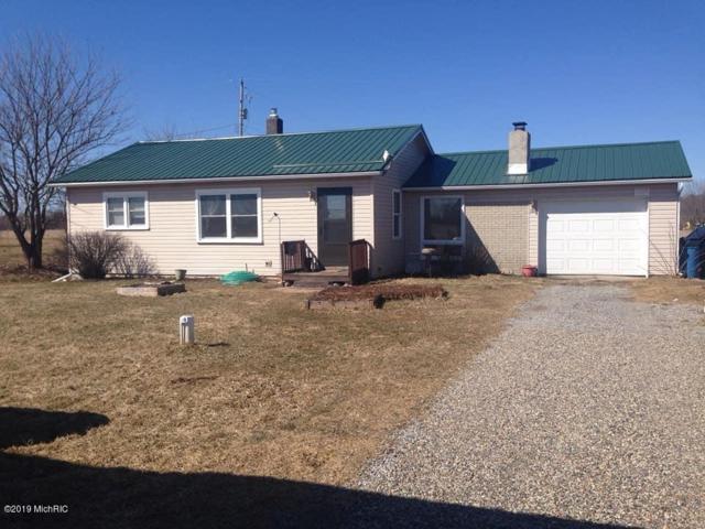 2220 S Meridian Road, Hudson, MI 49247 (MLS #19003721) :: Matt Mulder Home Selling Team