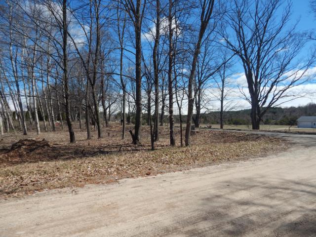 00 Potter Road Wildwood Lots 1, Bear Lake, MI 49614 (MLS #19004202) :: Matt Mulder Home Selling Team