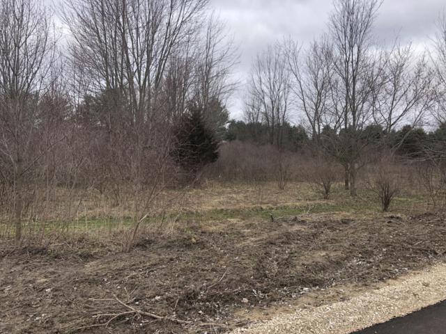 Parcel C Bauer Road, Hudsonville, MI 49426 (MLS #19004235) :: Deb Stevenson Group - Greenridge Realty