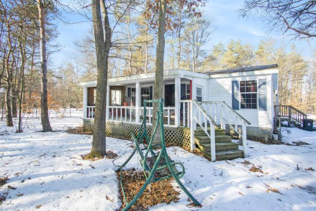 7094 S 116th Avenue, Rothbury, MI 49452 (MLS #19009688) :: Matt Mulder Home Selling Team