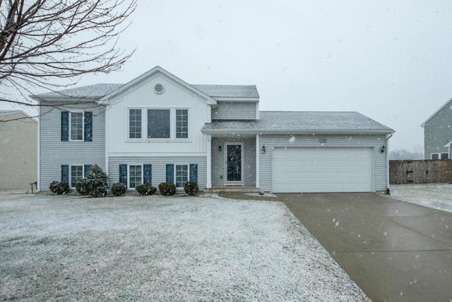1545 Darlington Trail, Kalamazoo, MI 49009 (MLS #19010065) :: Matt Mulder Home Selling Team