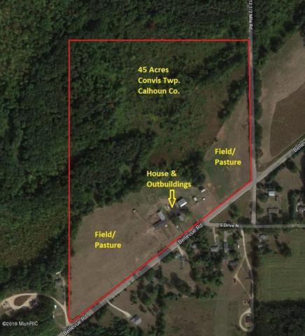 12409 Bellevue Road, Battle Creek, MI 49014 (MLS #19012747) :: Matt Mulder Home Selling Team