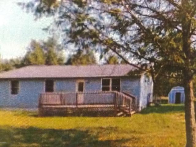 1077 E Yale Road, Rothbury, MI 49452 (MLS #19014476) :: Matt Mulder Home Selling Team
