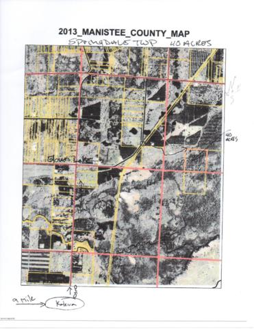 16283 Springdale Road, Thompsonville, MI 49683 (MLS #19014728) :: Matt Mulder Home Selling Team