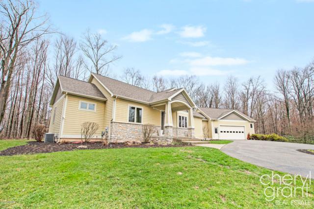 11225 Headwaters Court NE, Lowell, MI 49331 (MLS #19015181) :: Matt Mulder Home Selling Team