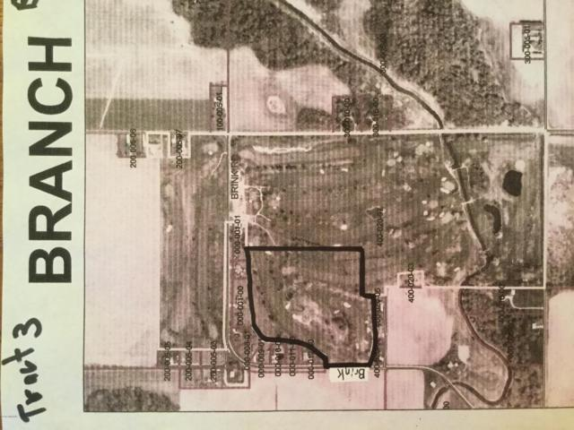 1051 Brink Road, Bronson, MI 49028 (MLS #19015494) :: Matt Mulder Home Selling Team