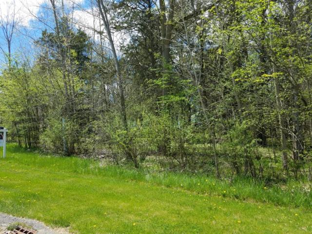 7417-LOT 19 Cedar Ridge Drive, Portland, MI 48875 (MLS #19015537) :: Deb Stevenson Group - Greenridge Realty