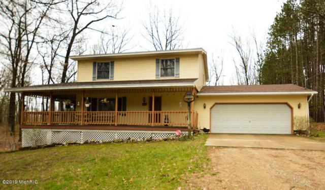 23127 Kendaville Road, Pierson, MI 49339 (MLS #19016754) :: Matt Mulder Home Selling Team