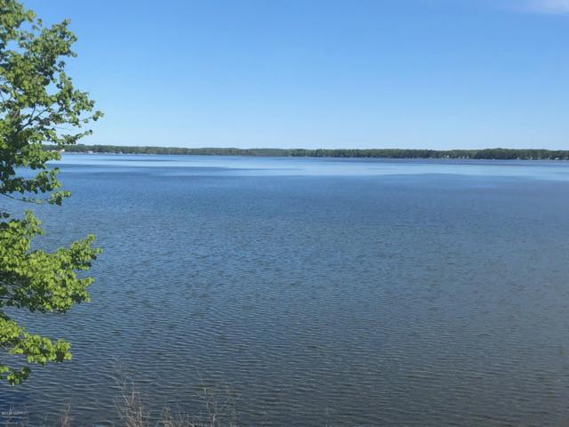 8199 Lake Street, Bear Lake, MI 49614 (MLS #19017222) :: Deb Stevenson Group - Greenridge Realty