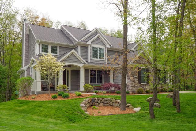 6926 Wild Plum Ridge, Richland, MI 49083 (MLS #19021432) :: Matt Mulder Home Selling Team