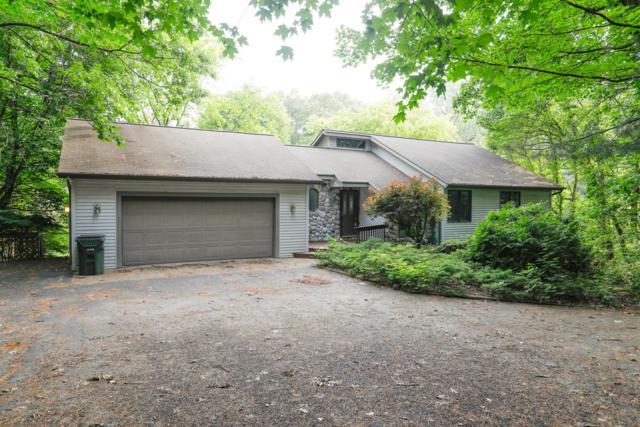 707 72nd Avenue, Lawton, MI 49065 (MLS #19028641) :: Matt Mulder Home Selling Team