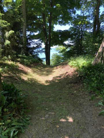 Lakeshore Drive, Fennville, MI 49408 (MLS #19030236) :: Deb Stevenson Group - Greenridge Realty