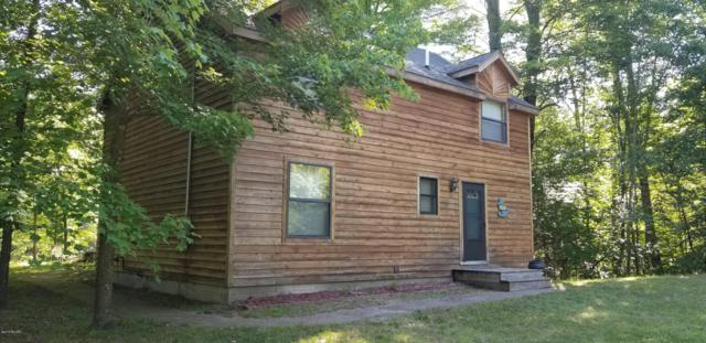 8804 Anne Drive, Walkerville, MI 49459 (MLS #19031967) :: Deb Stevenson Group - Greenridge Realty