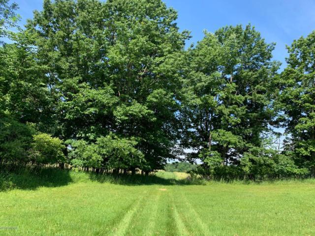 21-Acres M-37, Grant, MI 49327 (MLS #19032258) :: Deb Stevenson Group - Greenridge Realty