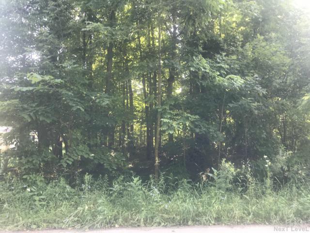 4108 E E Shore Dr Drive, Stanton, MI 48888 (MLS #19033062) :: Keller Williams RiverTown