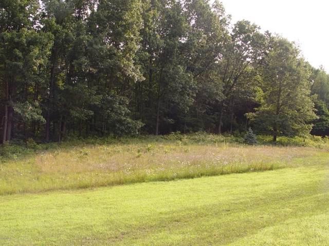 6248 Cain Creek Drive, Middleville, MI 49333 (MLS #19035061) :: JH Realty Partners