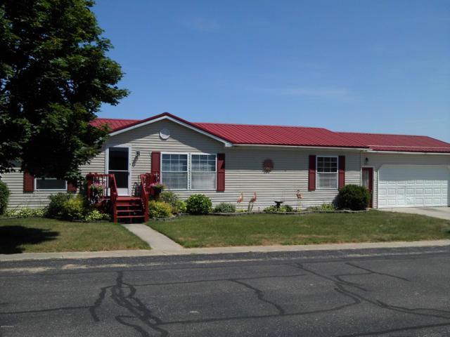 504 Country View Lane, Fremont, MI 49412 (MLS #19036312) :: Deb Stevenson Group - Greenridge Realty
