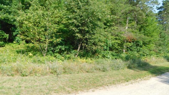 4931 Red Pine Drive, Grant, MI 49327 (MLS #19036775) :: JH Realty Partners