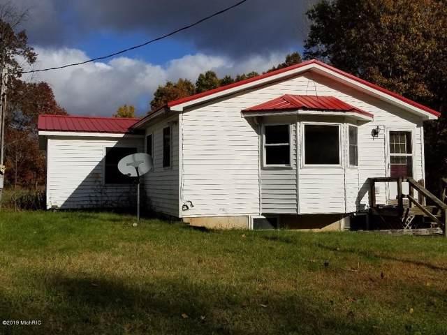 7575 E 72nd Street, Newaygo, MI 49337 (MLS #19046772) :: Deb Stevenson Group - Greenridge Realty