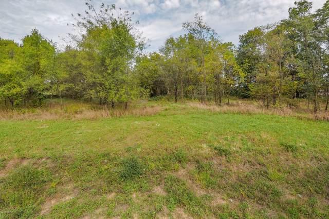 Lot 16 Bluff Drive, Three Rivers, MI 49093 (MLS #19048831) :: CENTURY 21 C. Howard