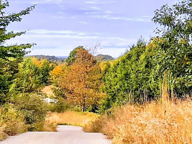 Lot 136 Horizon Ridge, Onekama, MI 49675 (MLS #19051079) :: CENTURY 21 C. Howard