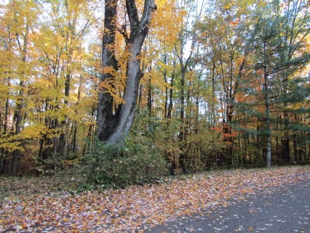 10131 Mountain View Trail, Canadian Lakes, MI 49346 (MLS #19051816) :: Deb Stevenson Group - Greenridge Realty