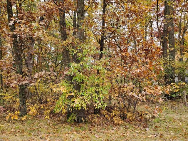 0 Ewing Road North, Twin Lake, MI 49457 (MLS #19052239) :: Deb Stevenson Group - Greenridge Realty