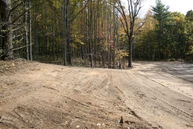 3 Pine Ridge Trail, Hamilton, MI 49419 (MLS #19052835) :: Deb Stevenson Group - Greenridge Realty
