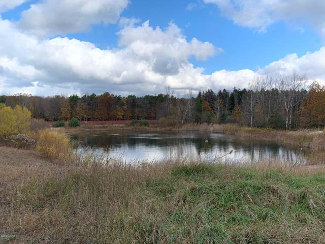 Brooklyn Drive, West Olive, MI 49460 (MLS #19053550) :: JH Realty Partners