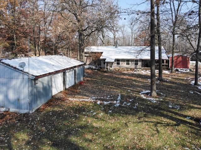 454 Turtle Lake Road, Union City, MI 49094 (MLS #19054711) :: Deb Stevenson Group - Greenridge Realty