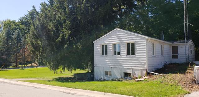 5590 Fairview Street, Stevensville, MI 49127 (MLS #19056921) :: Ginger Baxter Group