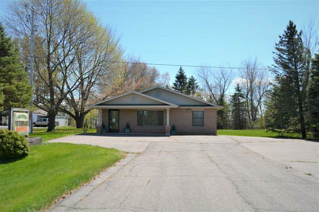 6899 Belding Road, Belding, MI 48809 (MLS #19058211) :: Jennifer Lane-Alwan