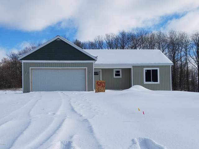 5242 N North Point Drive, Pierson, MI 49339 (MLS #19058496) :: Deb Stevenson Group - Greenridge Realty