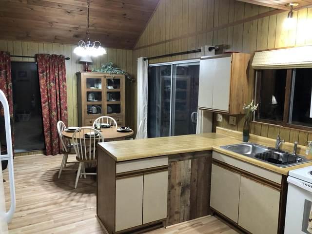 9356 W Orchard Lake Drive, Baldwin, MI 49304 (MLS #20005941) :: Deb Stevenson Group - Greenridge Realty