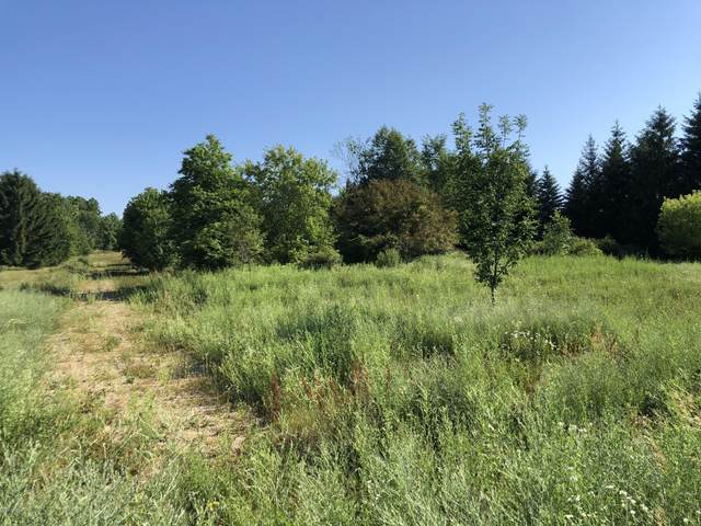 3775 56th Street SW, Wyoming, MI 49418 (MLS #20006166) :: JH Realty Partners