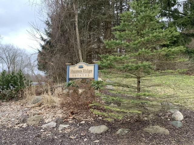 5824 Hunters Ridge, Fennville, MI 49408 (MLS #20011957) :: Jennifer Lane-Alwan