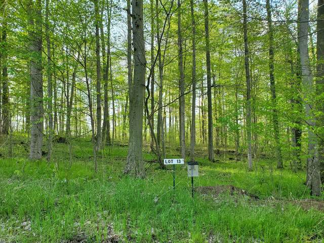 Lot 13 Hjermstad Drive, Ionia, MI 48846 (MLS #20017021) :: Your Kzoo Agents