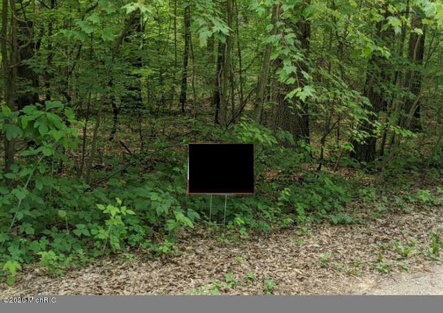 White Pine Parcel 8, Lowell, MI 49331 (MLS #20025195) :: Jennifer Lane-Alwan