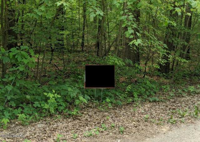 White Pine Parcel 10, Lowell, MI 49331 (MLS #20025198) :: Jennifer Lane-Alwan
