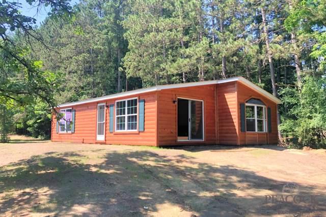 15088 Rapids Drive, Hersey, MI 49639 (MLS #20027269) :: Deb Stevenson Group - Greenridge Realty
