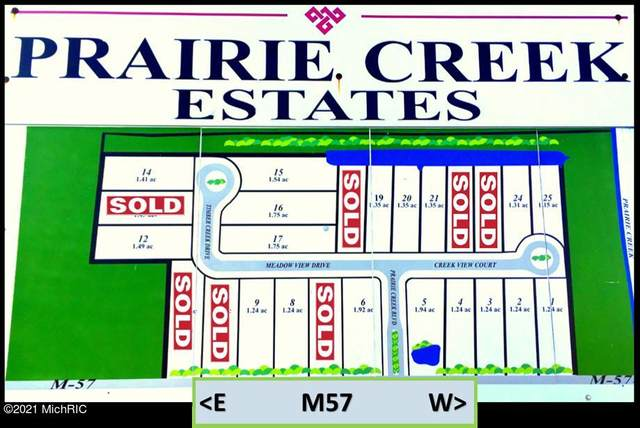 4644 Creek View Court, Fenwick, MI 48834 (MLS #20027556) :: JH Realty Partners