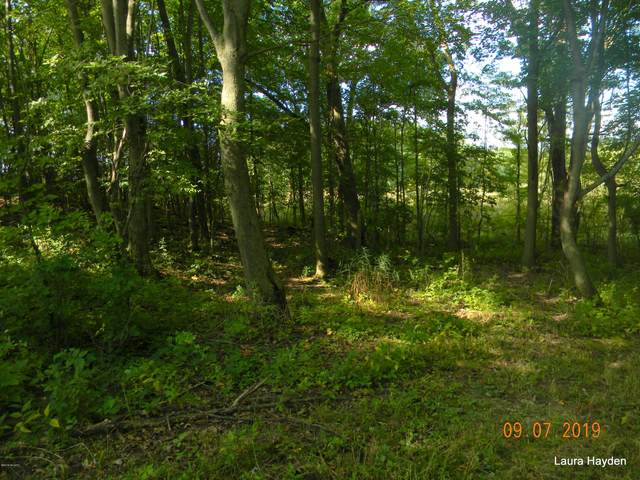 PARCEL 2 Dick Rd, Fenwick, MI 48834 (MLS #20033347) :: CENTURY 21 C. Howard