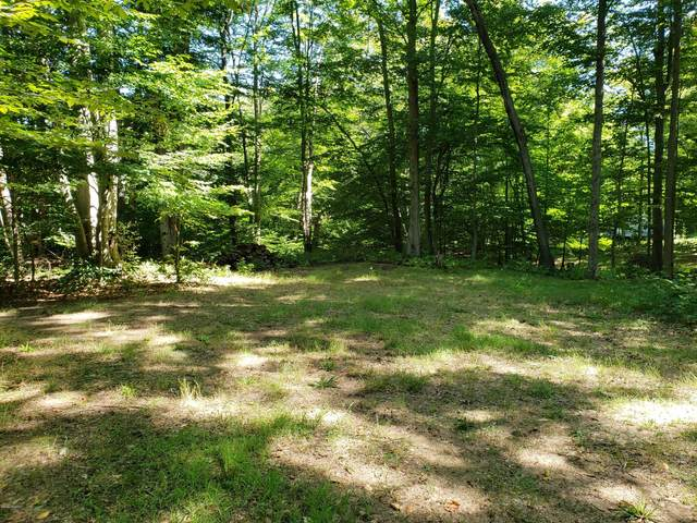 4460 E Silver Beaches Court, Custer, MI 49405 (MLS #20033876) :: JH Realty Partners