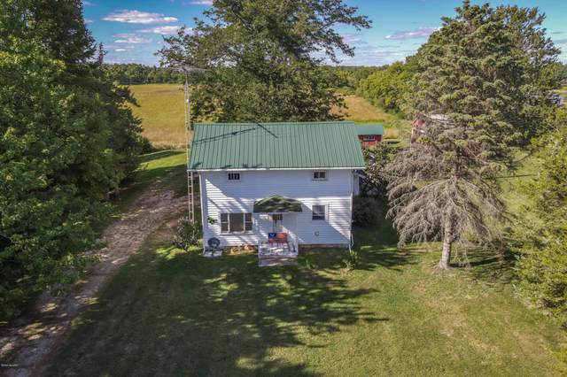 3200 Reading Road E, Osseo, MI 49266 (MLS #20033951) :: Ron Ekema Team