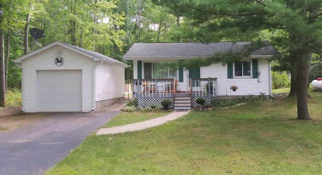 19981 Indian Drive, Paris, MI 49338 (MLS #20036866) :: JH Realty Partners
