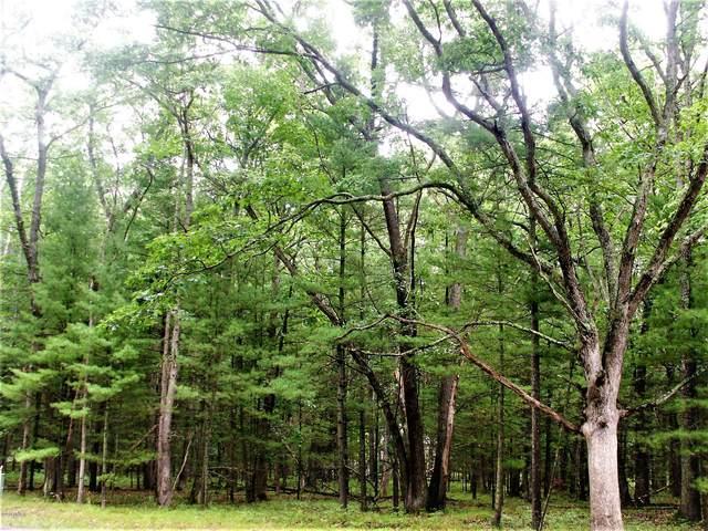 40 Meadow Wood Dr  S, Manistee, MI 49660 (MLS #20039032) :: CENTURY 21 C. Howard