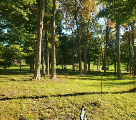 4817 Knoll Court #14, Watervliet, MI 49098 (MLS #20040426) :: Deb Stevenson Group - Greenridge Realty