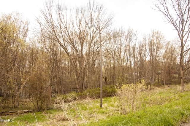0 Madron Lake Road, Buchanan, MI 49107 (MLS #21002149) :: Deb Stevenson Group - Greenridge Realty